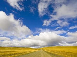 Cumulus Clouds above Rural Road by John Eastcott & Yva Momatiuk