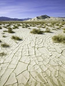 Dry and cracked mud flats in Death Valley National Park by John Eastcott & Yva Momatiuk