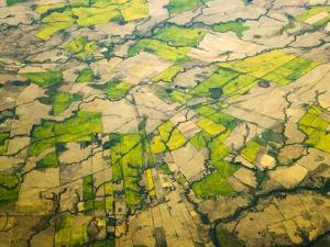 Green Agricultural Fields in Chile by John Eastcott & Yva Momatiuk