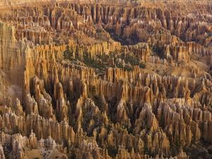 Hoodoos in Bryce Canyon National Park by John Eastcott & Yva Momatiuk