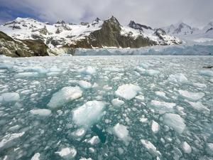 Ice Chunks From Twitcher Glacier Below the Salvesen Range by John Eastcott & Yva Momatiuk