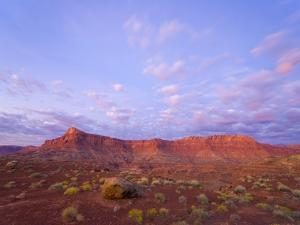 Sandstone Buttes at Dawn by John Eastcott & Yva Momatiuk