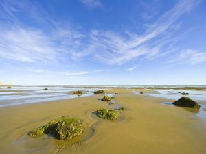 Sandy Beach at Low Tide, Valdez Peninsula by John Eastcott & Yva Momatiuk