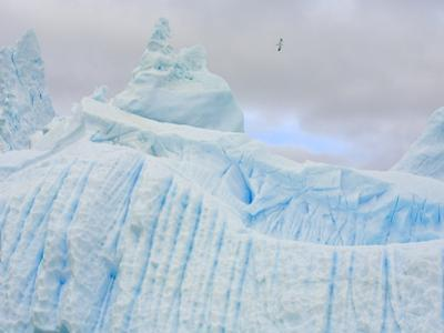 Stranded Icebergs Sculpted by Waves and Melt