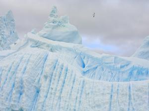 Stranded Icebergs Sculpted by Waves and Melt by John Eastcott & Yva Momatiuk