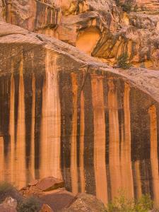 Streaks of Desert Varnish on Rock Face by John Eastcott & Yva Momatiuk