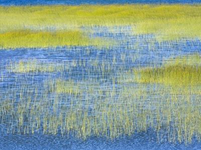 Wetland Grasses in Lake by John Eastcott & Yva Momatiuk
