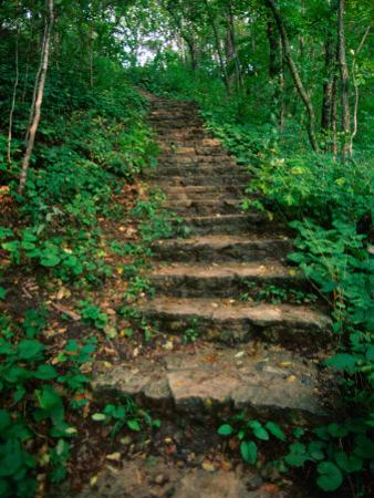 Hiking Trail Through Whitewater State Park,Whitewater State Park, Minnesota, USA