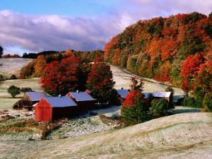 Trees in Autumn at Jenne Farm with Dusting of Snow, South Woodstock, Woodstock, Vermont by John Elk III