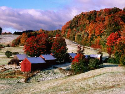 Trees in Autumn at Jenne Farm with Dusting of Snow, South Woodstock, Woodstock, Vermont