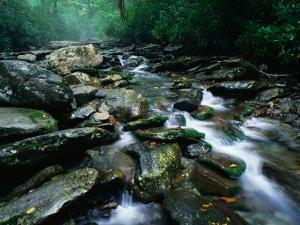 Water Flowing over Rocks in Alum Creek, Great Smoky Mountains National Park, Tennessee by John Elk III