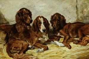 Shot and His Friends, Three Irish Red and White Setters, 1876 by John Emms