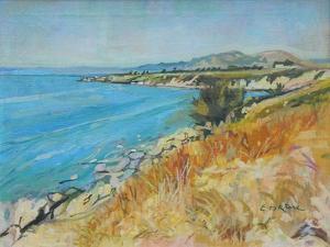 Pefkos Bay, Rhodes by John Erskine