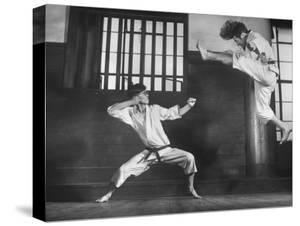 Japanese Karate Students Demonstrating Fighting by John Florea