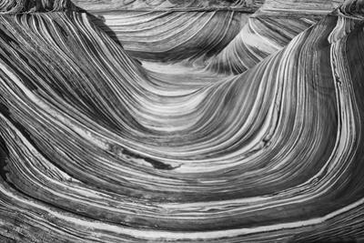 Above the Wave Zion Utah, USA by John Ford