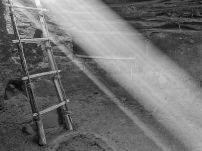 Ancient Kiva with Ladder, Cedar Mesa, Utah, USA by John Ford