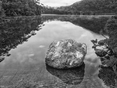 Australia, Tasmania, Lila Lake Cradle Mountain National Park by John Ford