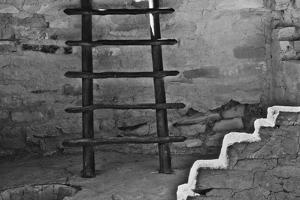 USA, Colorado, Mesa Verde, Long Ladder by John Ford