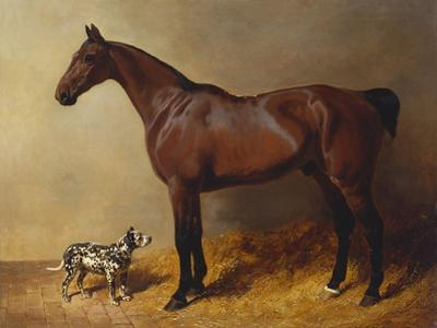 A Bay Hunter and a Spotted Dog in a Stable Interior by John Frederick Herring I