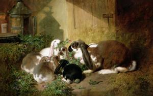 A Lop-Eared Doe Rabbit with Her Young by John Frederick Herring I