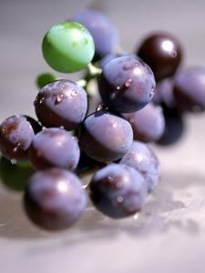 Close-up of Grapes by John Glembin