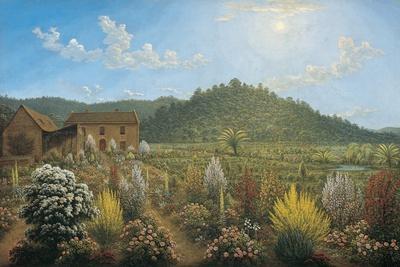 A View of the Artist's House and Garden, in Mills Plains, Van Diemen's Land, 1835