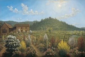 A View of the Artist's House and Garden, in Mills Plains, Van Diemen's Land, 1835 by John Glover