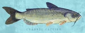 Channel Catfish by John Golden