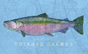 Chinook Salmon by John Golden
