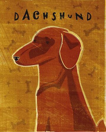 Dachshund (red) by John Golden