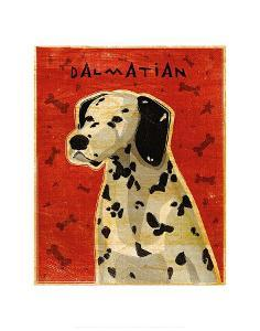 Dalmation by John Golden