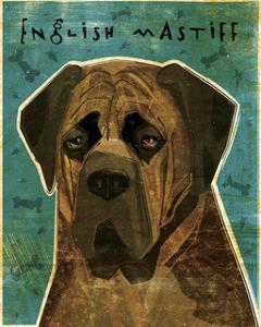 English Mastiff (Brindle) by John Golden