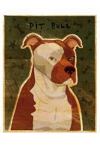 Pit Bull by John Golden