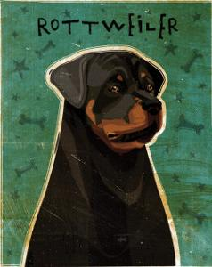 Rottweiler by John Golden