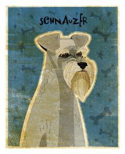 Schnauzer by John Golden