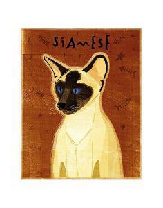 Siamese by John Golden
