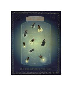 The Enlightened Fireflies by John Golden