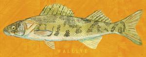 Walleye by John Golden