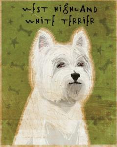 West Highland White Terrier by John Golden