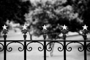 Capitol Stars 2 by John Gusky