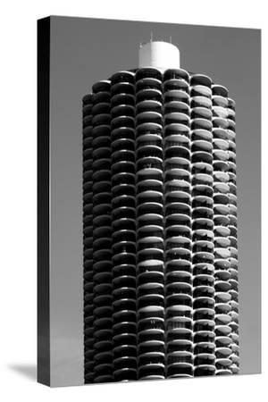 Corn Cob Building