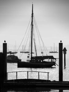 Sausalito Sailboat by John Gusky