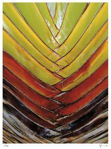 Vertical Color Palm by John Gynell