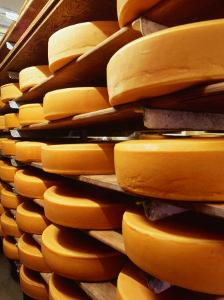 Cheese at Heidi Farm,Tasmania, Australia by John Hay