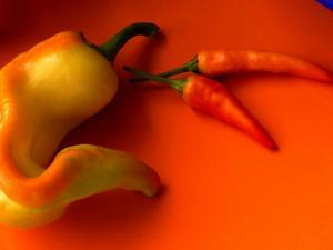 Chilli Peppers in Varying Shades on an Orange Plate, Australia by John Hay