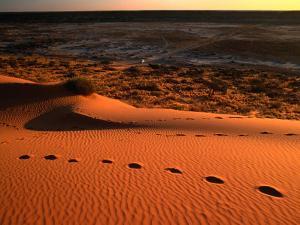 """On Top of the """"Big Red"""" Sand Dune in the Simpson Desert, Birdsville,Queensland, Australia by John Hay"""
