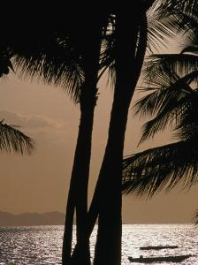Tropical Island Paradise, Fiji, Pacific by John Hay