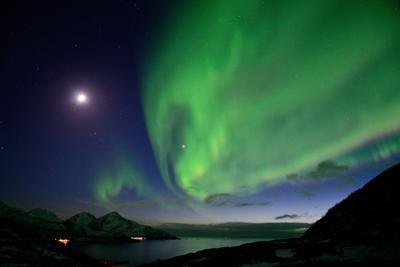 Northern Lights in Grotfjord