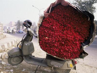 Flower Market, Lado Sarai, Delhi, India