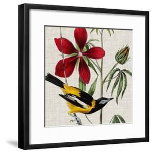 Avian Crop I by John James Audubon